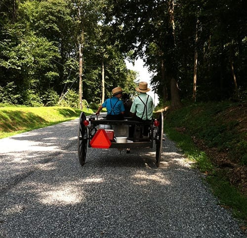 Amish Buggy Seen on Tour